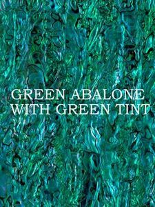ALVS Green Abalone with Green Tint